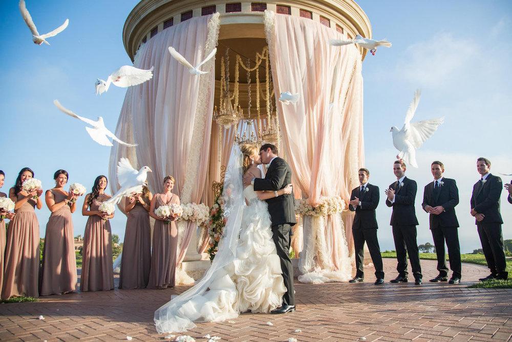 1505665139_wedding-avant-studios-kopiya