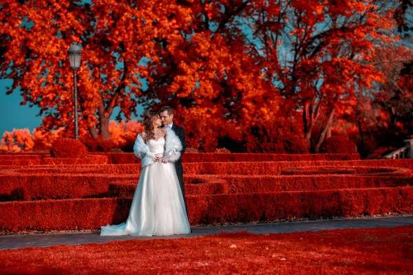 Юрий и Татьяна-comment-image