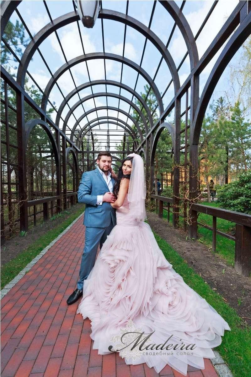 Невеста Алена и Влад