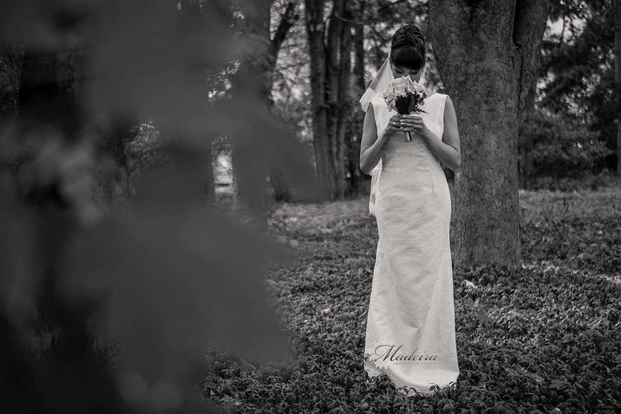 Невеста Сюзанна